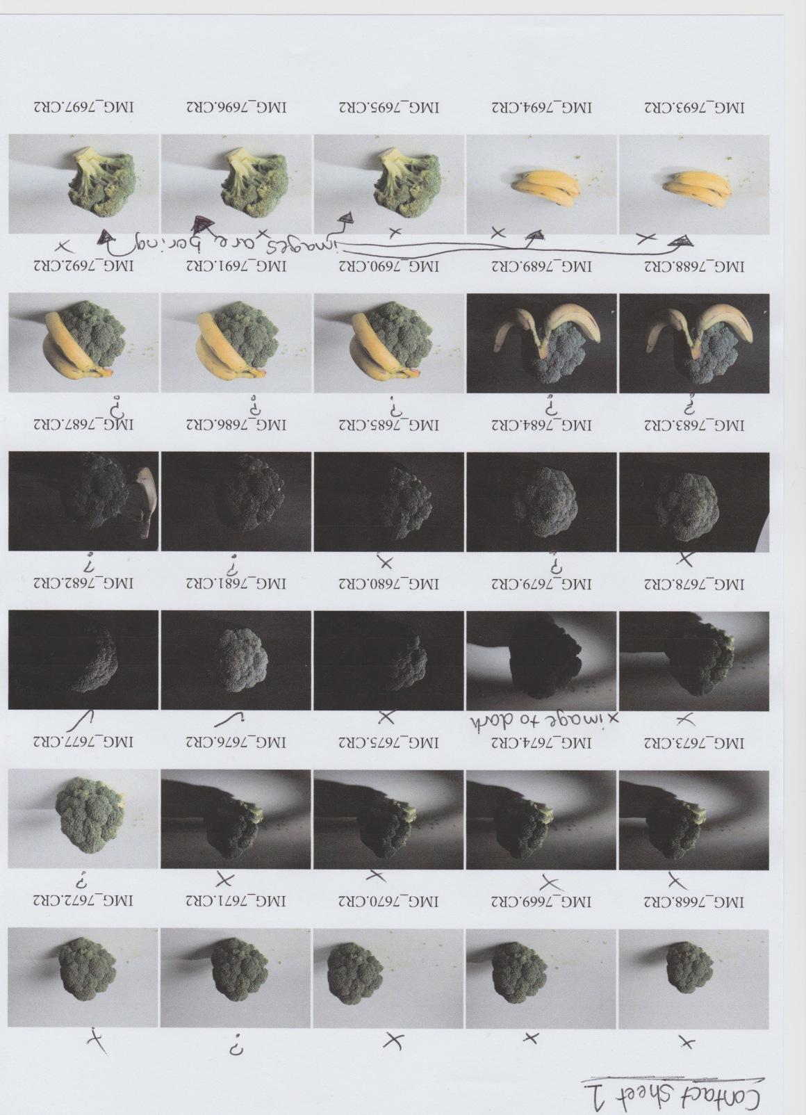 Scan test shoot contact sheet 1.jpeg