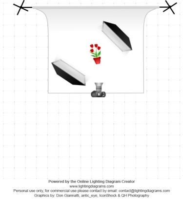 lighting-diagram-1484841375.jpg