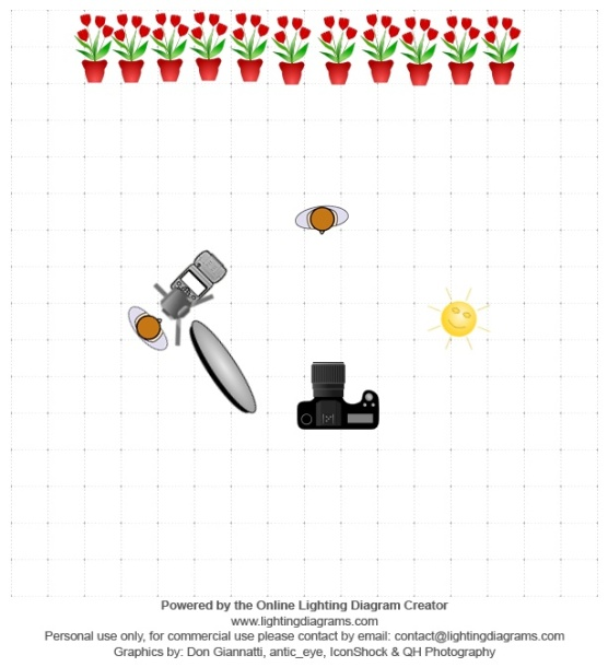 Holly McGlynn assisting lighting-diagram-1526989709.jpg